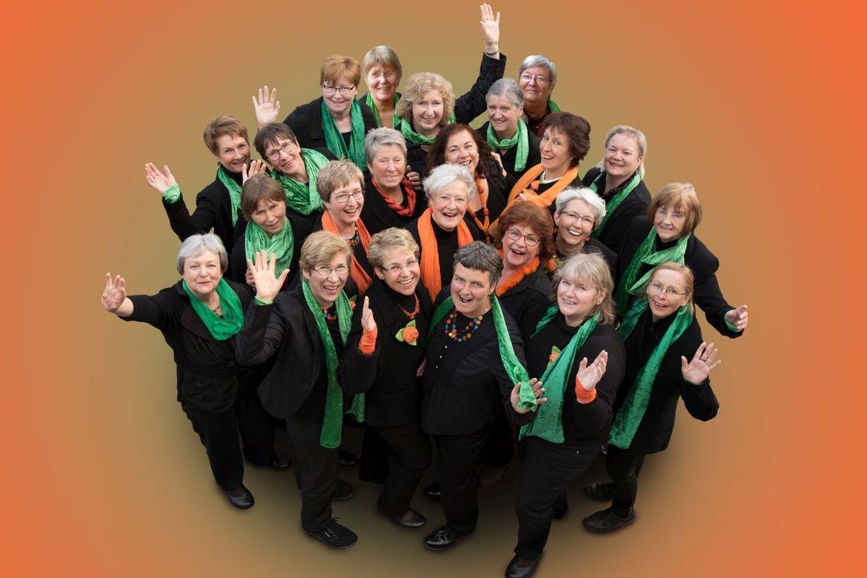 Frauen des Frauenwerkschores Cantalydie - Copyright: Ev. Frauenwerk Lübeck-Lauenburg