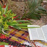 Pflanzen aus den Gärten der Frauen, eine Bislama-Bibel, Girlanden-Halsketten und palmengeflochtene Körbe und Fächer - Copyright: vanuatu_copyright-wgt_vanuatu.jpg